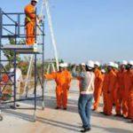 scaffold training